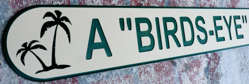 ksb BIRDS EYE 2